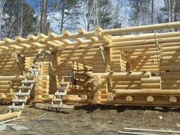 Commercial offer Supply cylindering logs - фото 1