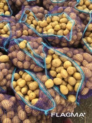 potatoes in bulk